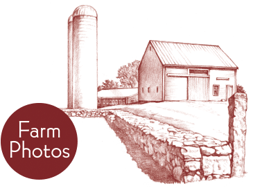 farm-photos